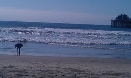 oceanside beach